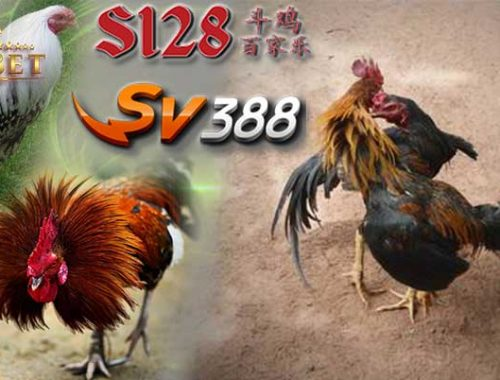 Game Sabung Ayam