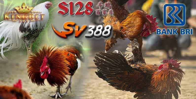 Sv388 Bank BRI